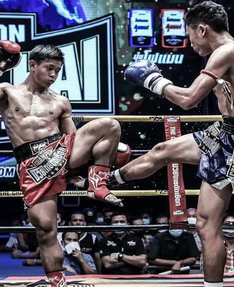 pro-fight2
