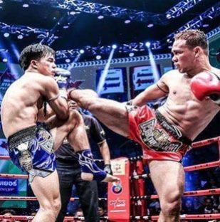 pro-fight-2